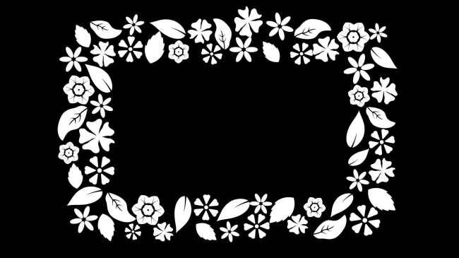 花纹图案动画模板下载(图片编号:10805853)
