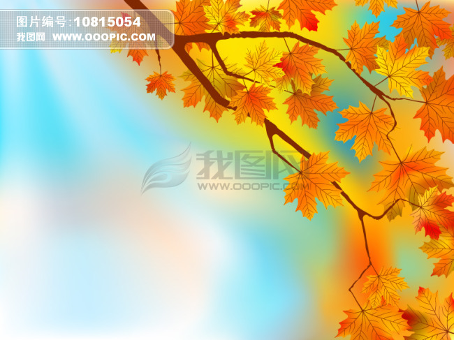 满枝/满枝枫叶朦胧背景矢量素材