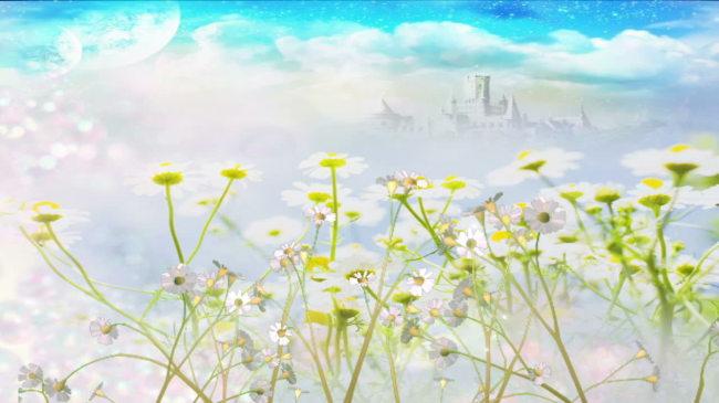 唯美鲜花背景动态视频素材模板下载(图片编号:)