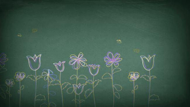 盛开的花朵简笔画视频素材