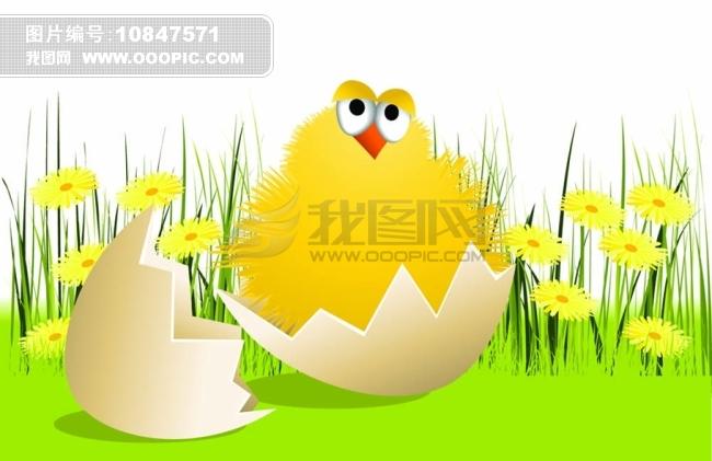 矢量卡通小鸡图片素材图片下载 可爱小鸡 蛋壳 破壳小鸡 图片素材  你