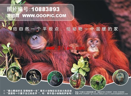动物园门票cdr模板