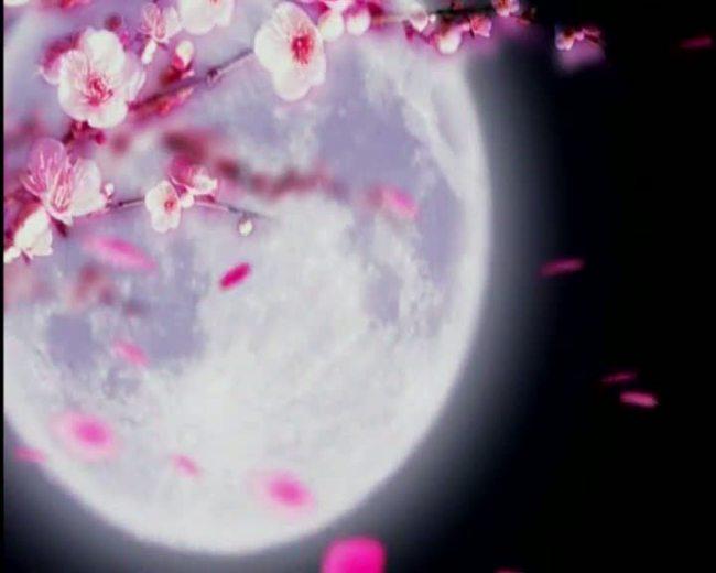 月亮唯美图片