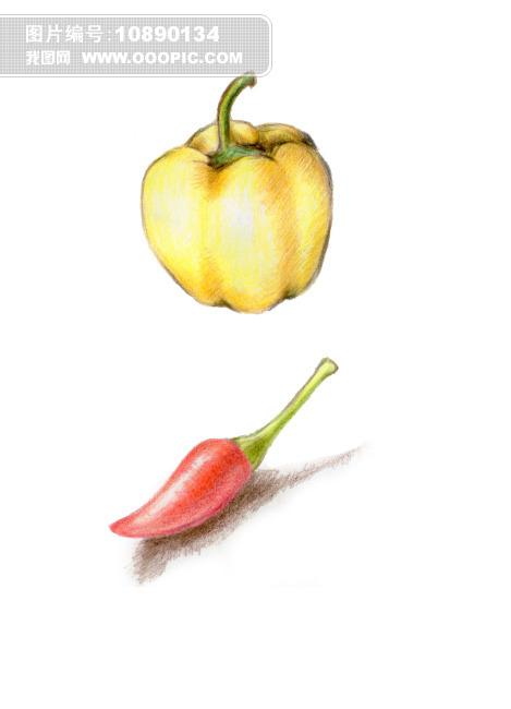 色铅笔 彩铅画 插画 插图 彩椒 黄椒 柿子椒 红辣椒 黄辣椒 蔬菜 蔬果