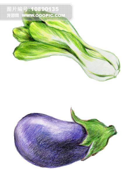 手绘高清工笔画青菜类