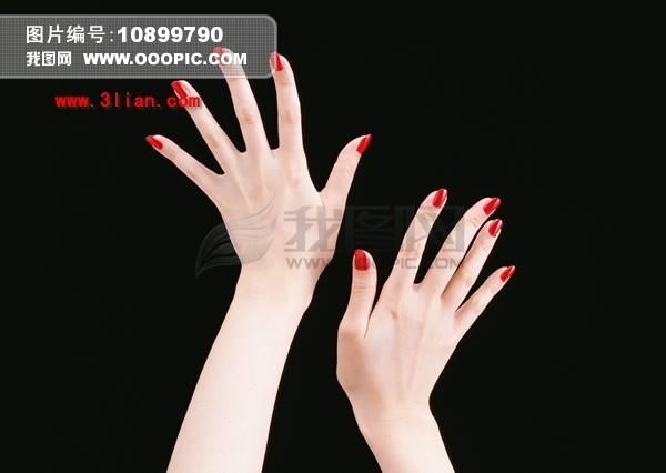 女性/PSD女性双手