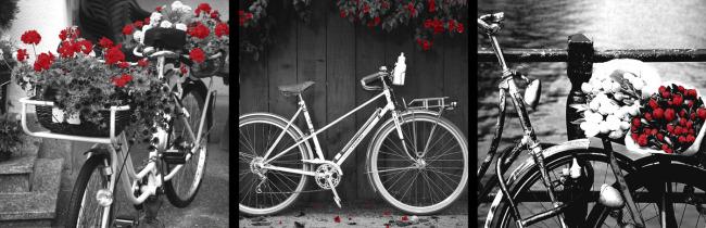 客厅三联自行车鲜花无框画