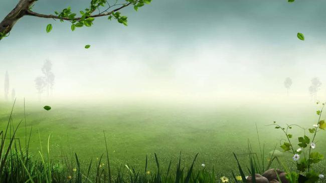 树叶绿叶飘落高清晚会舞台led大屏幕背景视频素材图片