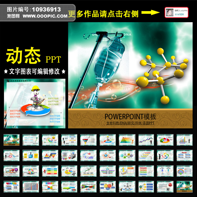 生物 染色体 实验报告 化学 会