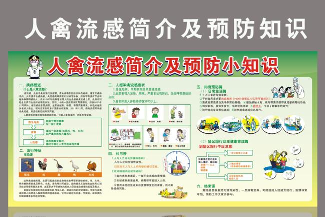 人禽流感简介及预防知识展板宣传栏模板下载 10958433 医院展板设计 图片