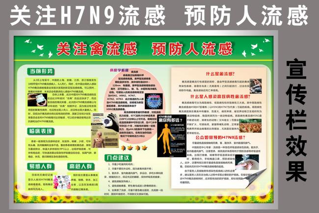 H7N9流感 预防人流感展板宣传栏模板下载 10958528 医院展板设计 图片