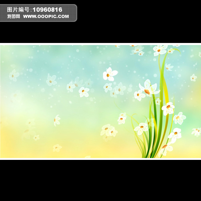 水仙花手绘稿