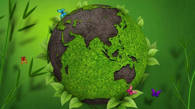 环保手工小制作大全的视频播放