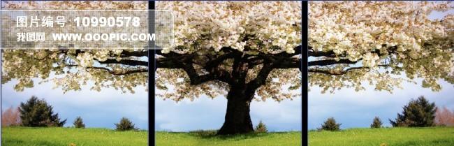 客厅三联樱花树无框画图片
