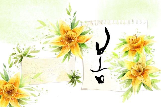 手绘 花 花草 花底 花卉