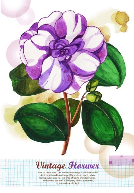花宣传海报手绘
