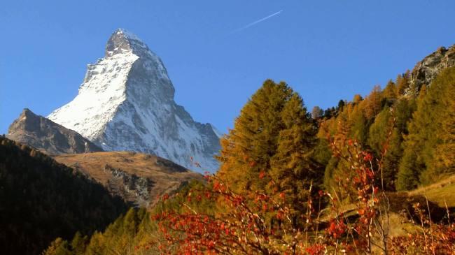 雪山风光高清视频背景素材图片下载 雪山风光鲜花森林高山 峰顶 白雪