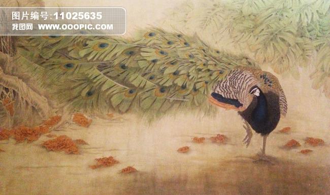 孔雀油画 孔雀图片插画装饰画 动物水彩画 动物水墨画 动物工笔画