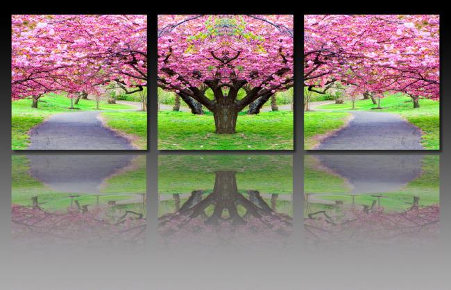 樱花树无框画模板下载(图片编号:11045381)图片
