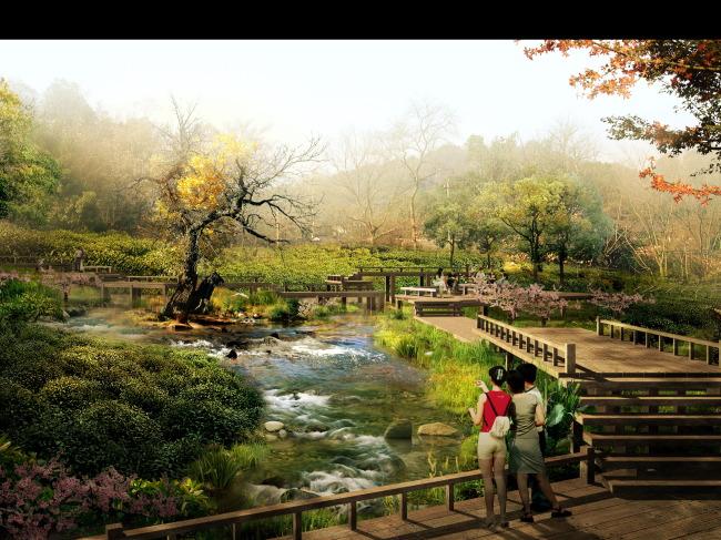 湿地公园 栈桥 滨水景观 滨河景观 河道 木栈桥 木平台 园林景观效果