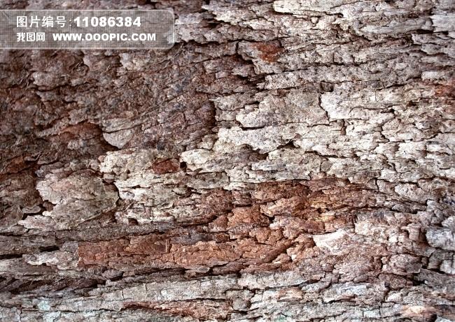 木质 树墩 木纹 纹理 实木 肌理 木柴 年轮 树皮纹理 环保 砍树 木头