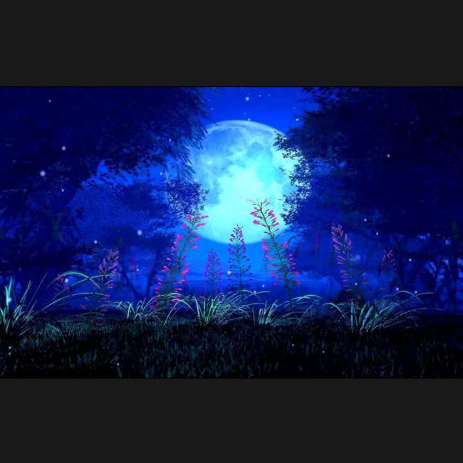 led动态背景 夜色 夜空