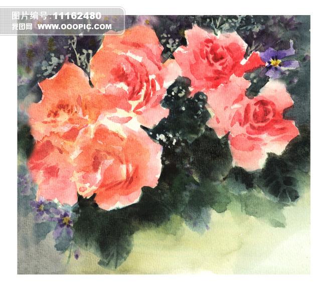 红色 玫瑰花