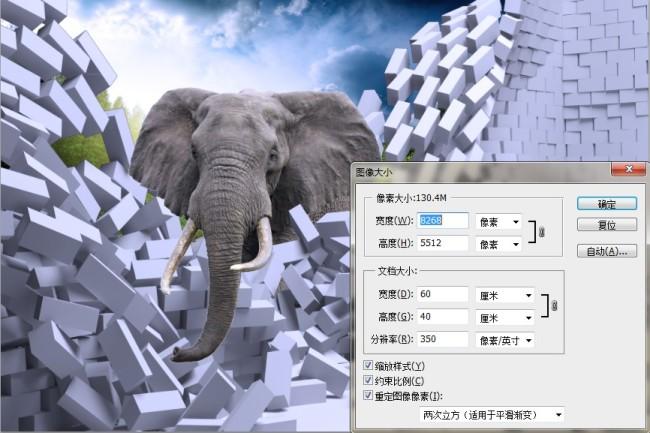 3d壁画大象觅觅壁画