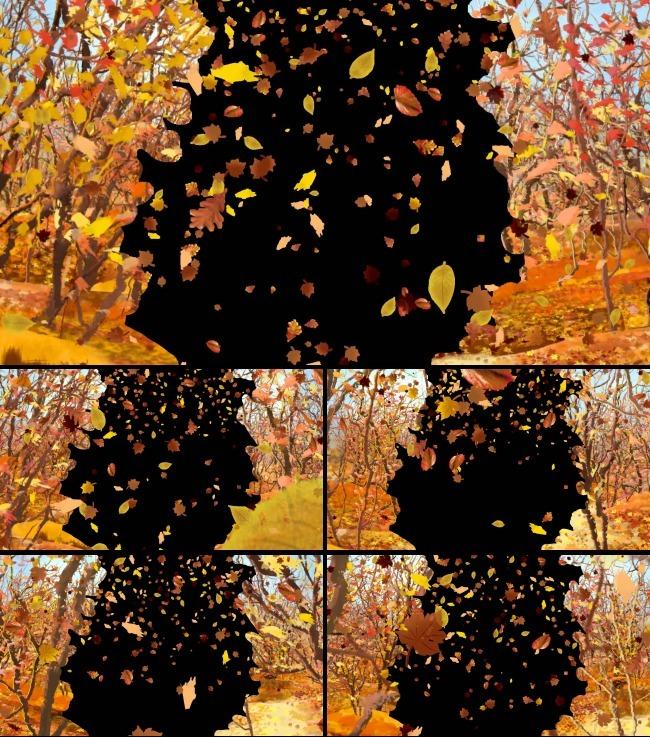 金秋丛林树叶飘落高清边框遮罩视频素材图片