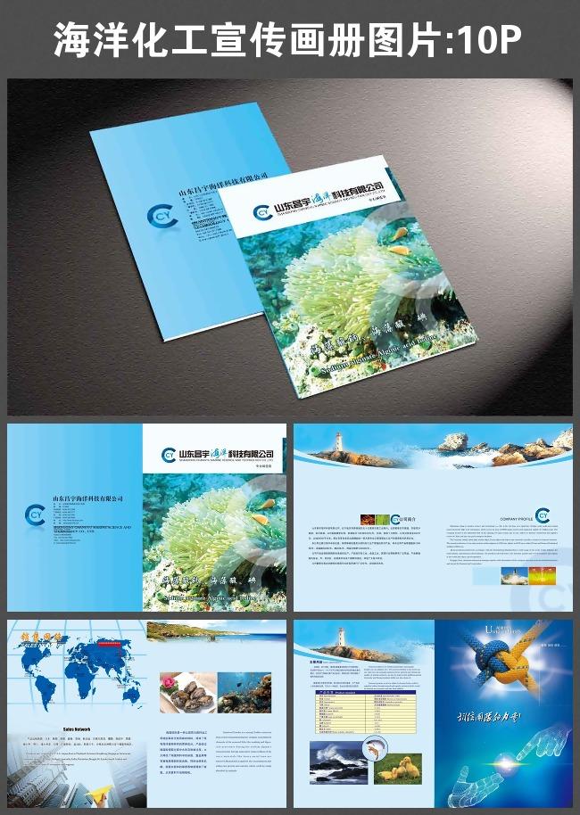 海洋化工宣传画册图片