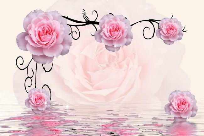 背景/时尚粉红玫瑰电视背景