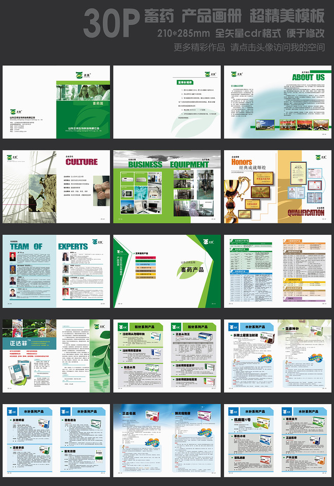 动物药品画册 消毒剂画册 杀虫剂画册 口服液画册 粉针系列产品 水针