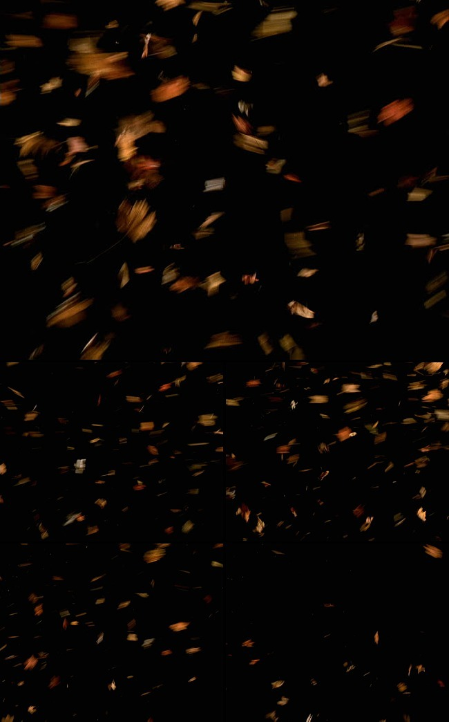 特效|背景视频素材 > 雪片烟花鹅毛粒子特效动态