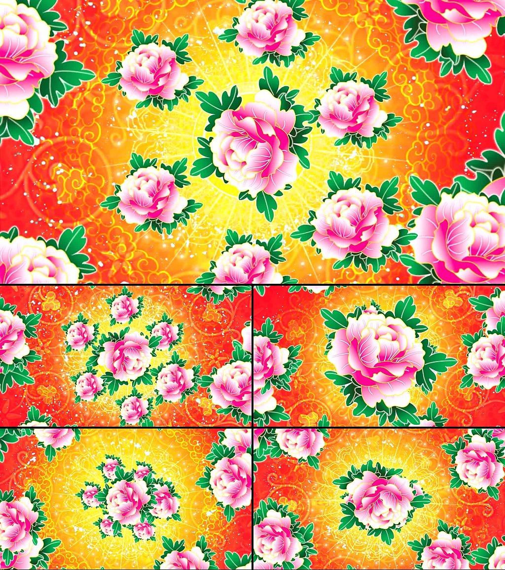 手绘牡丹花视频1080p