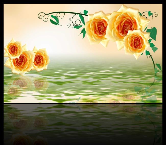 玫瑰花背景图片素