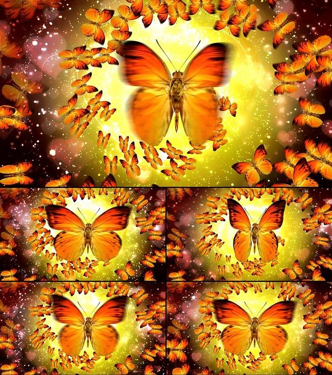 美丽蝴蝶梦蝴蝶飞舞视频模板下载 11649803 动态 特效 背景视频素材