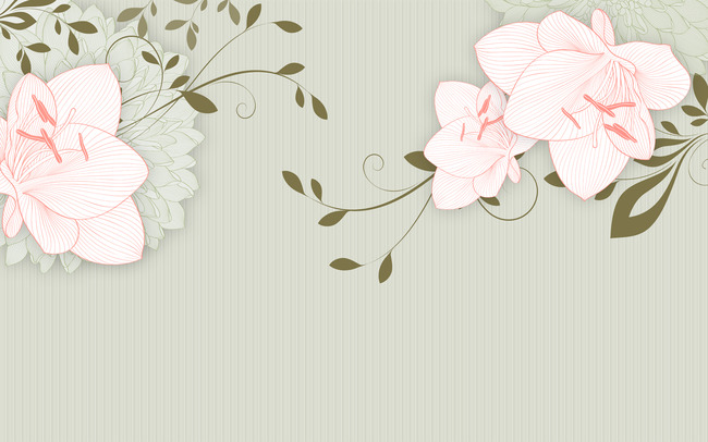边框画 花边 手绘
