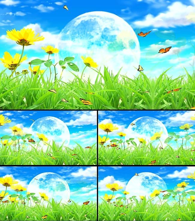 花丛中蝴蝶飞舞视频模板下载 11721694 动态 特效 背景视频素材 AE模