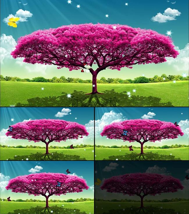 生长许愿树动态蝴蝶飞舞模板下载 11723547 LED视频素材 AE模版