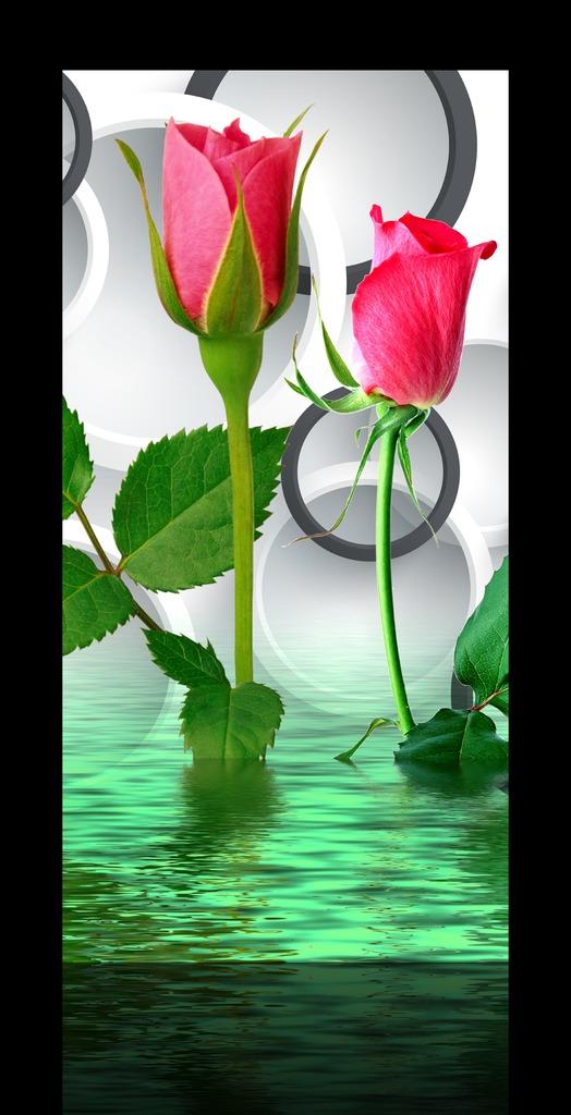 我图网提供精品流行立体水中玫瑰花朵玄关过道背景墙装饰画素材下载,作品模板源文件可以编辑替换,设计作品简介: 立体水中玫瑰花朵玄关过道背景墙装饰画,模式:RGB格式高清大图,使用软件为软件: Photoshop CS2(.PSD)