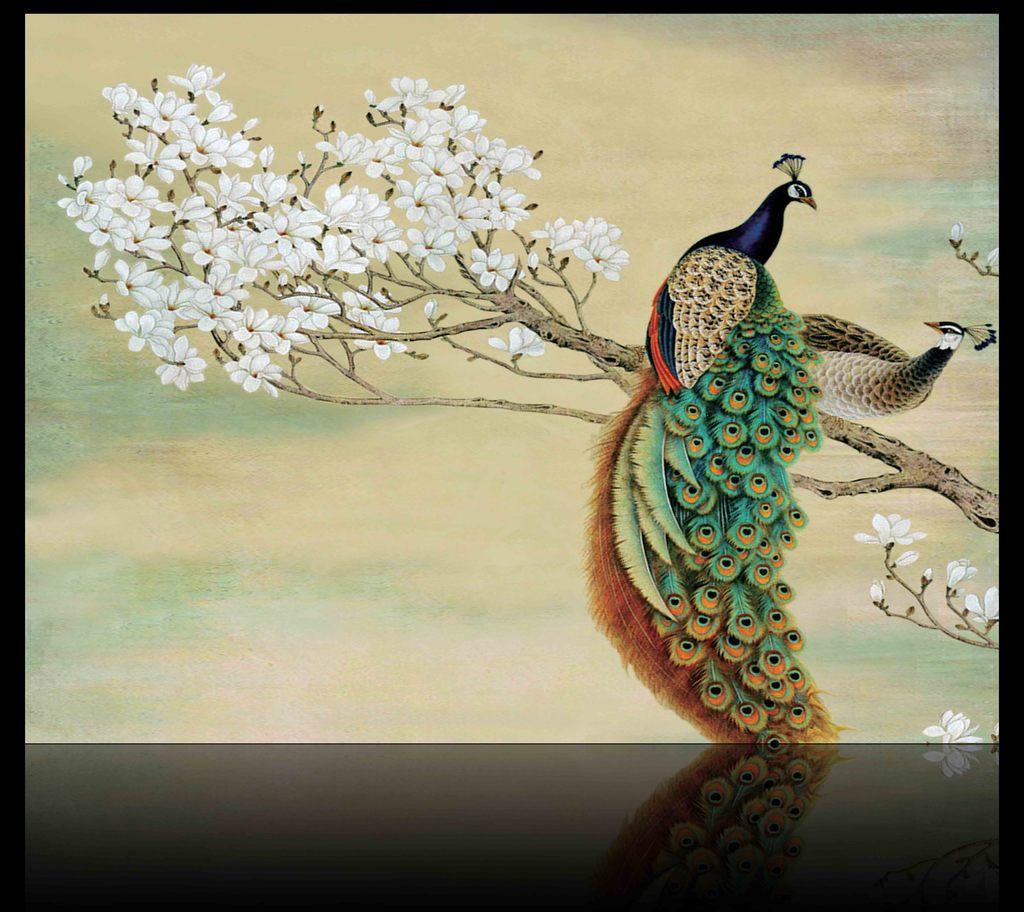 孔雀玉兰花工笔画分享展示
