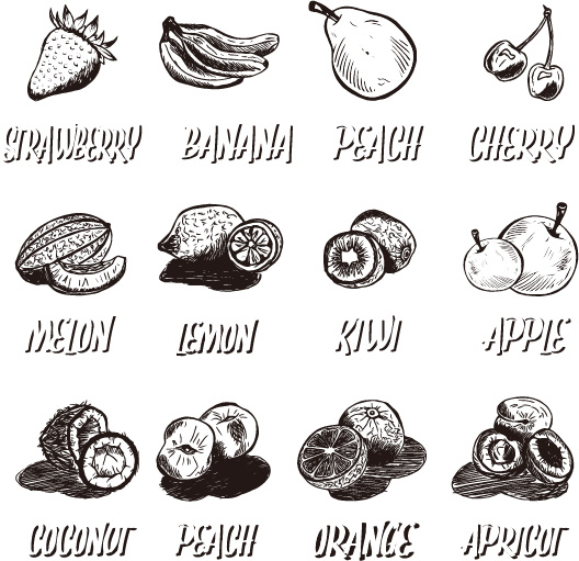 水果 素描/素描水果