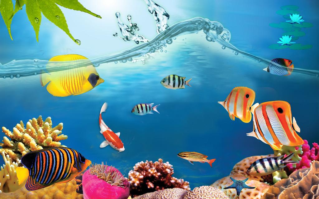 海洋世界电视背景墙装饰画