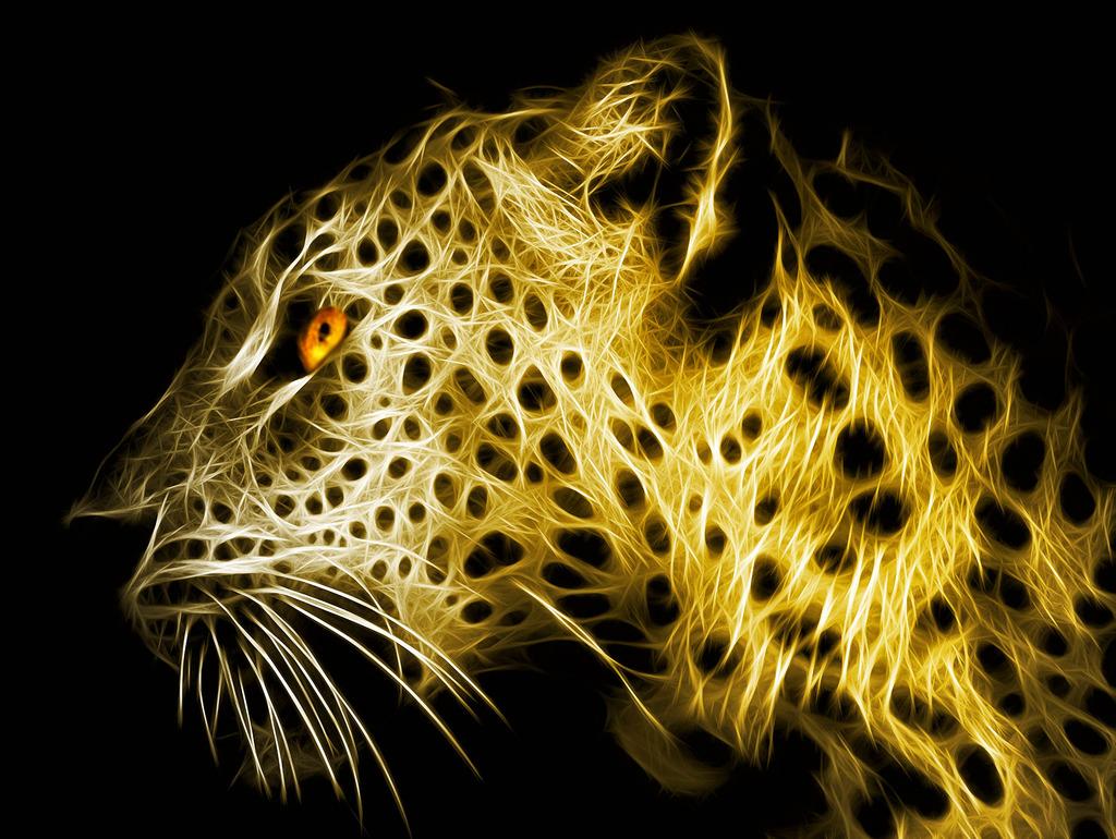 金钱豹 狼      四联 四幅 简约 简洁 办公室 电表箱 装饰画 野生动物图片