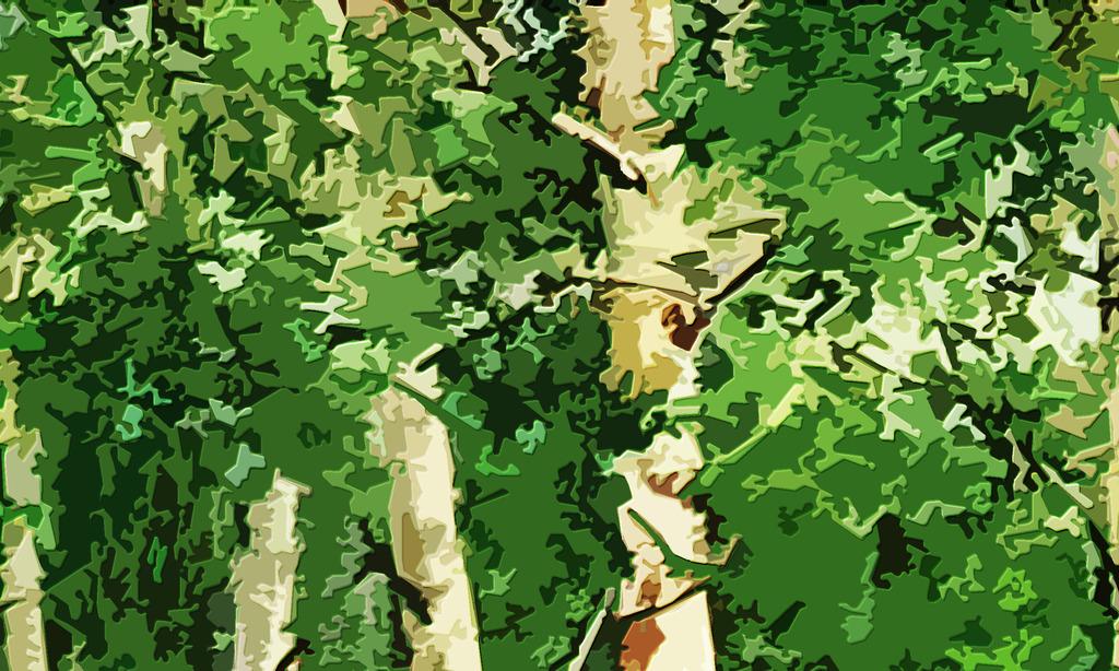 高清木刻效果白桦树系列装饰画背景墙