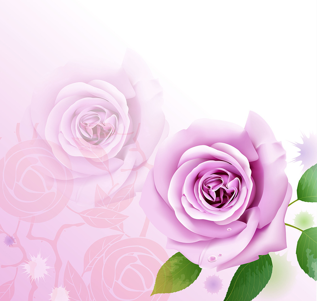 粉色 粉色花 花朵