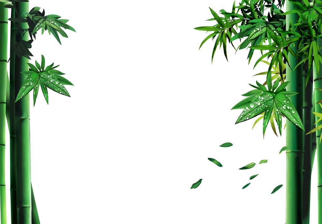 竹子手绘手绘竹子