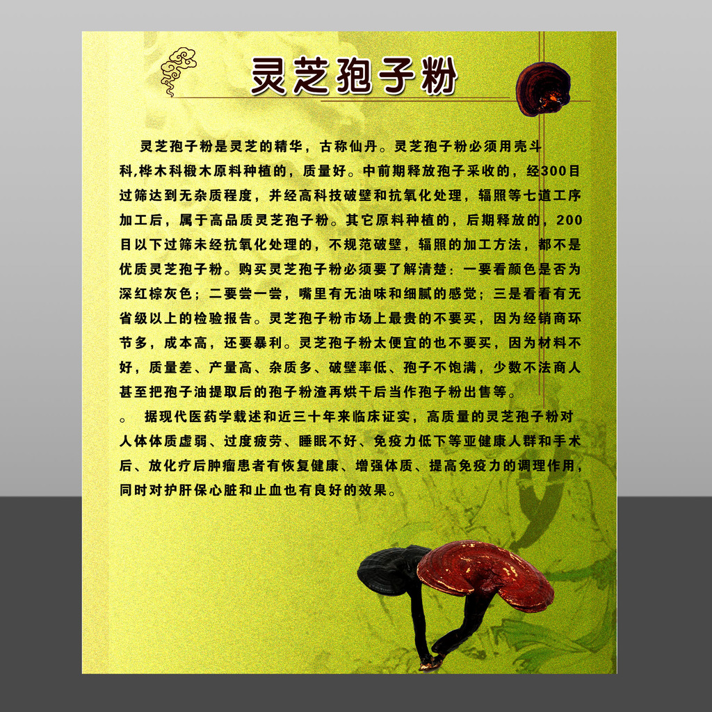 灵芝孢子粉海报素材下载