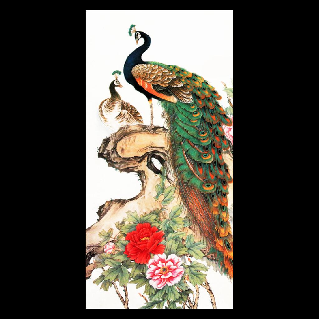 中国工笔花鸟画 玄关背景墙-孔雀 室内背景墙富贵吉祥梅花 玉兰花