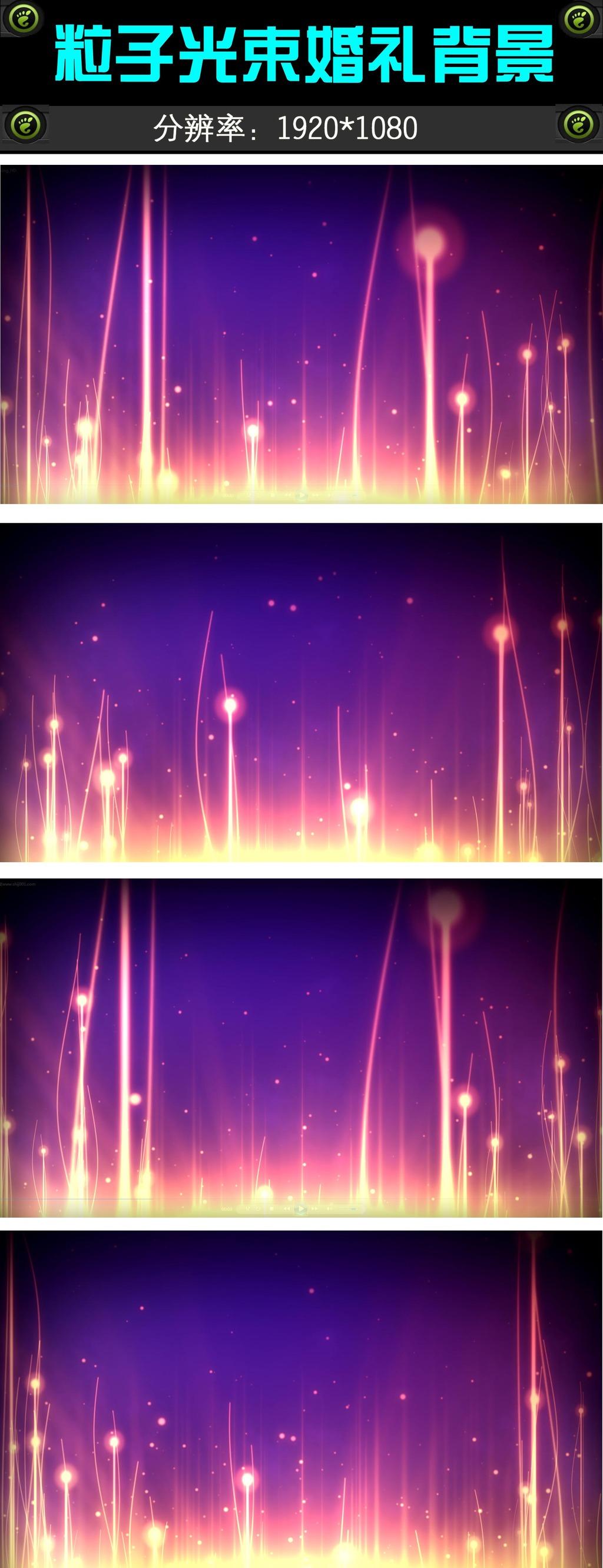 唯美视频光束粒子背景婚礼图片模板下载(视频奎因素材图片